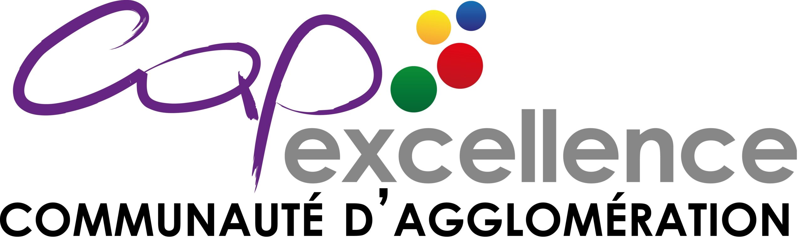 Logo_CapExcellence