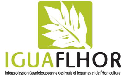 iguaflhor